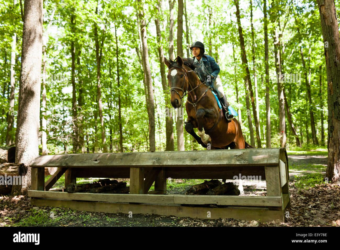 Jinete saltando a caballo. Imagen De Stock