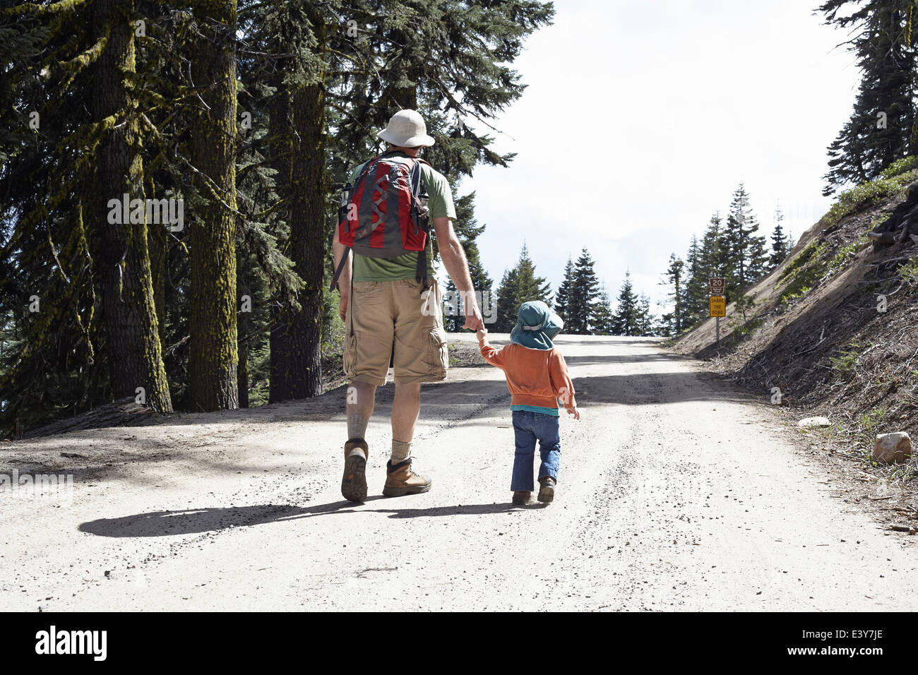 Vista trasera de padre e hija, tomados de la mano caminando a través del bosque de Oregón, EE.UU. Imagen De Stock