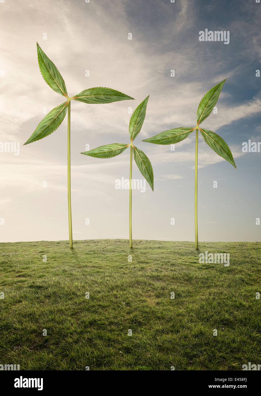 Plantas como las turbinas eólicas Foto de stock