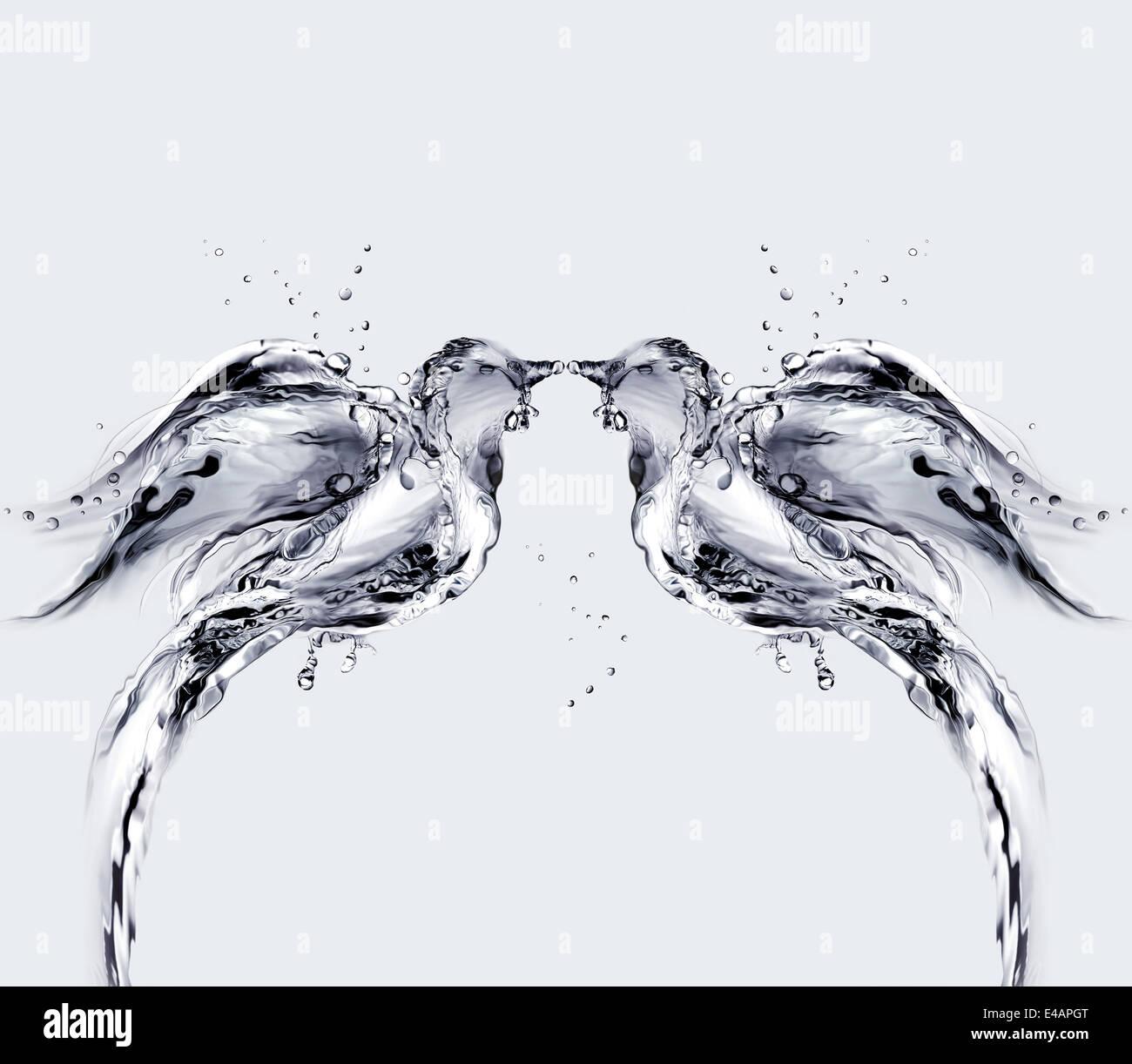 Dos pájaros de agua besos. Imagen De Stock