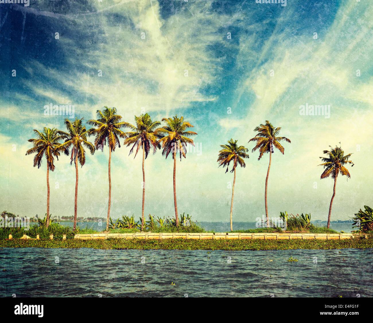 Vintage Retro estilo HIPSTER imagen viajes de palmas en remansos de Kerala con textura grunge superpuestos. Kerala, Imagen De Stock