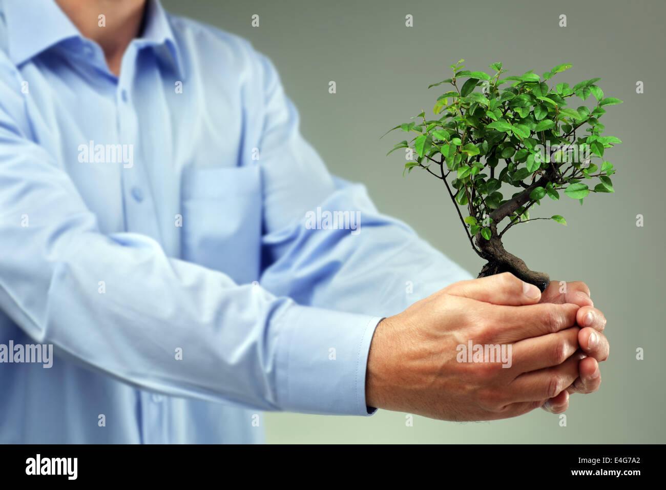 Teniendo cuidado de nuevo desarrollo Imagen De Stock