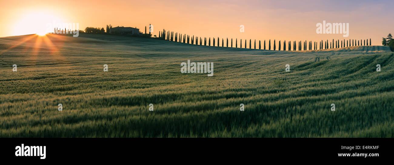 En el corazón de la Toscana, en el campo de la Val d'Orcia, se encuentra el Agriturismo Poggio Covili Foto de stock