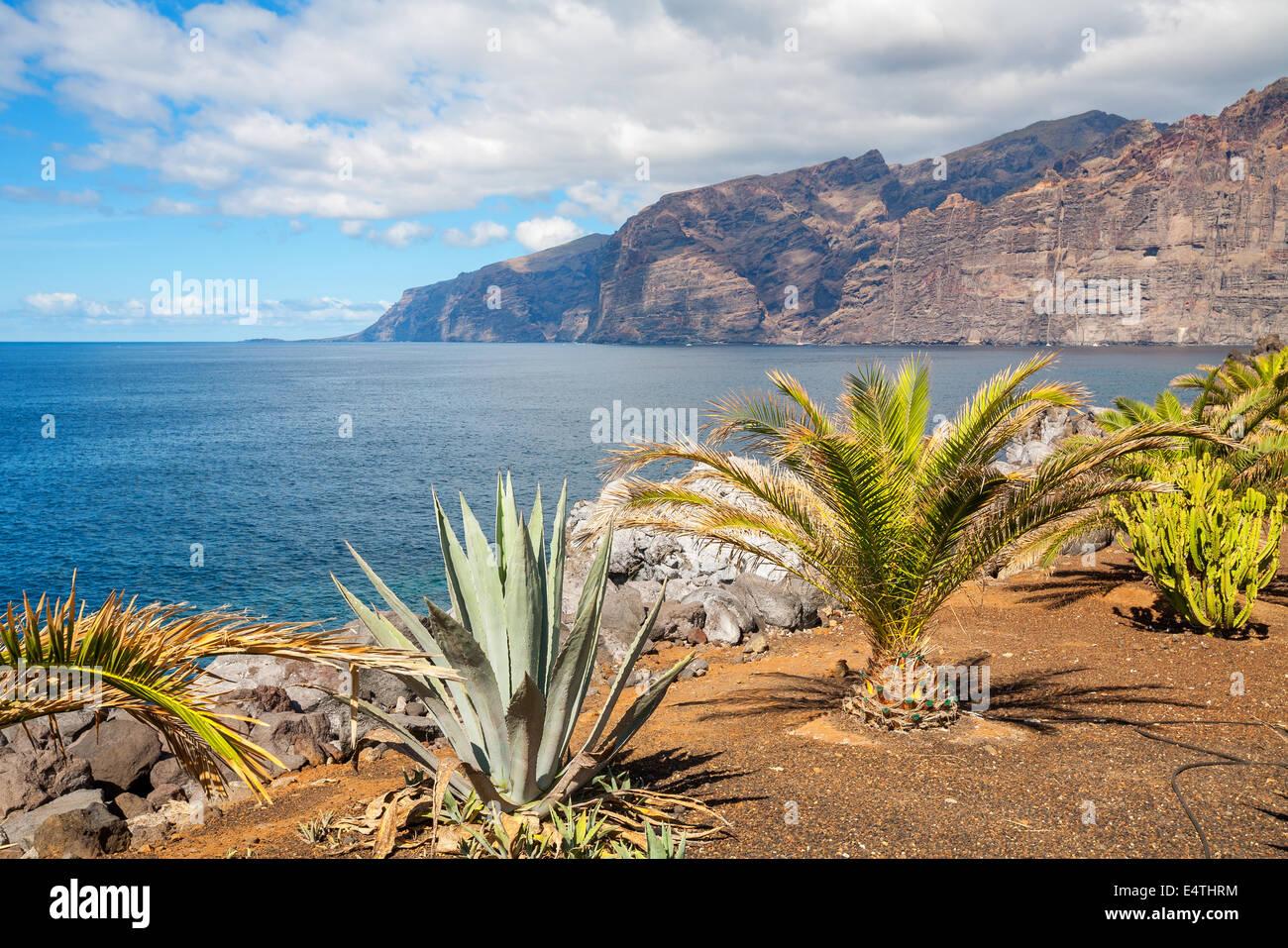 Los Gigantes. Tenerife, España Imagen De Stock