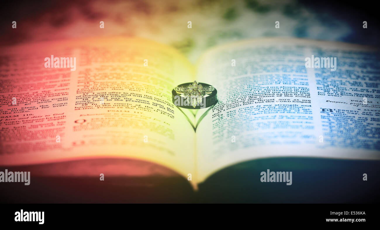 Matrimonio Igualitario Biblia : Tras la polémica por el matrimonio gay aseguran que silva toma