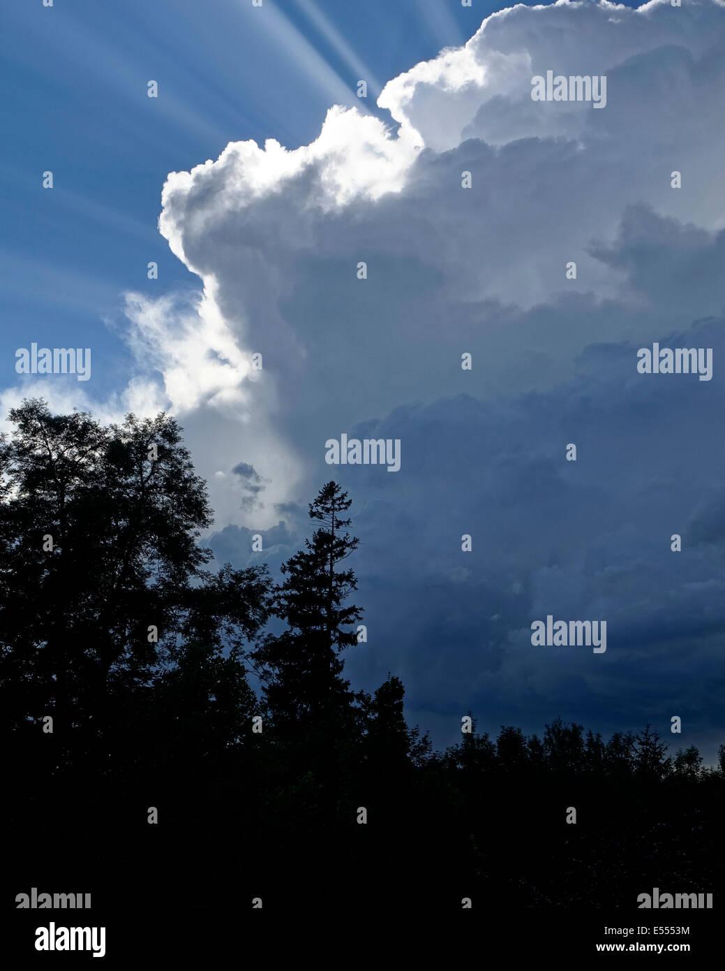 Naturaleza: la tormenta se aproxima Imagen De Stock