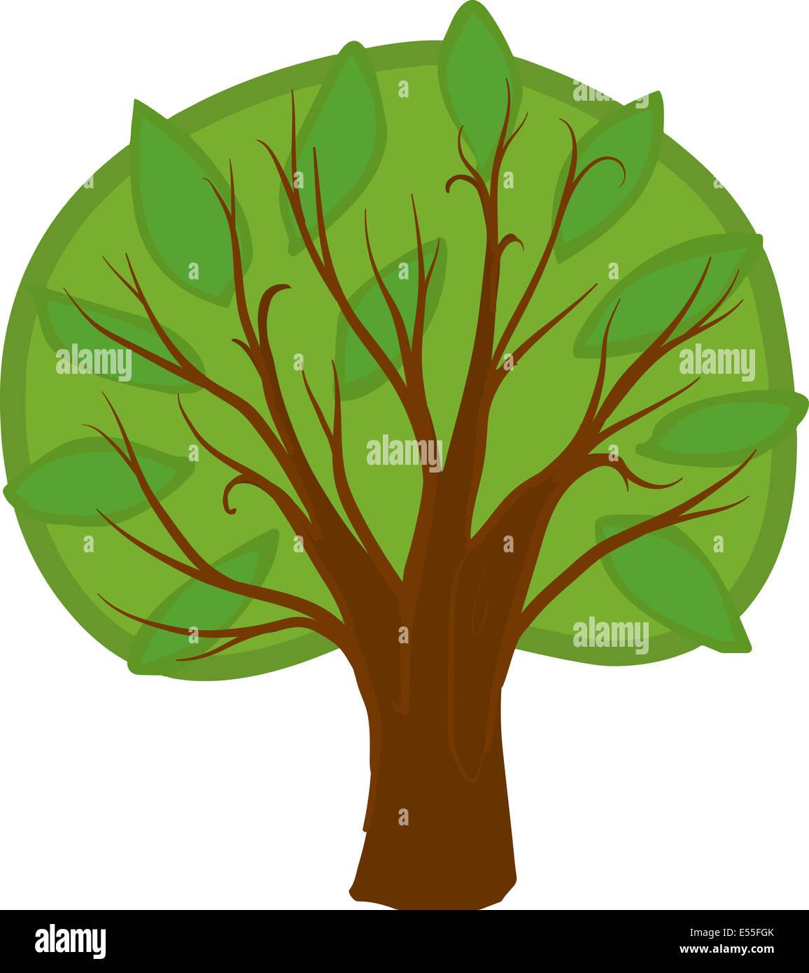 Ilustración de un árbol caducifolio de dibujos animados con luz y hojas de  color verde oscuro, marrón, tronco y ramas. Aislados Fotografía de stock -  Alamy