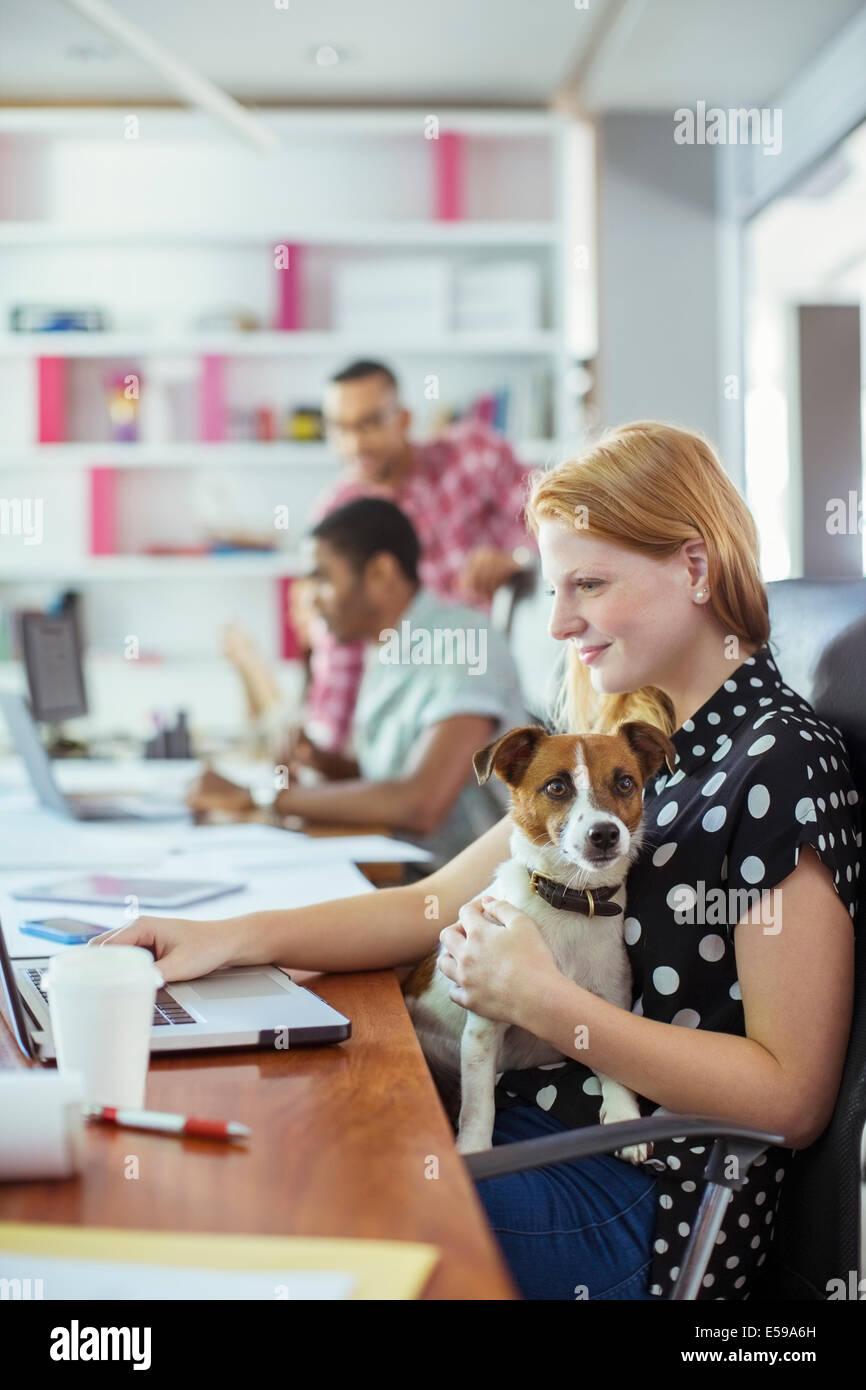 Perro sentado en el regazo de la mujer en la oficina Imagen De Stock