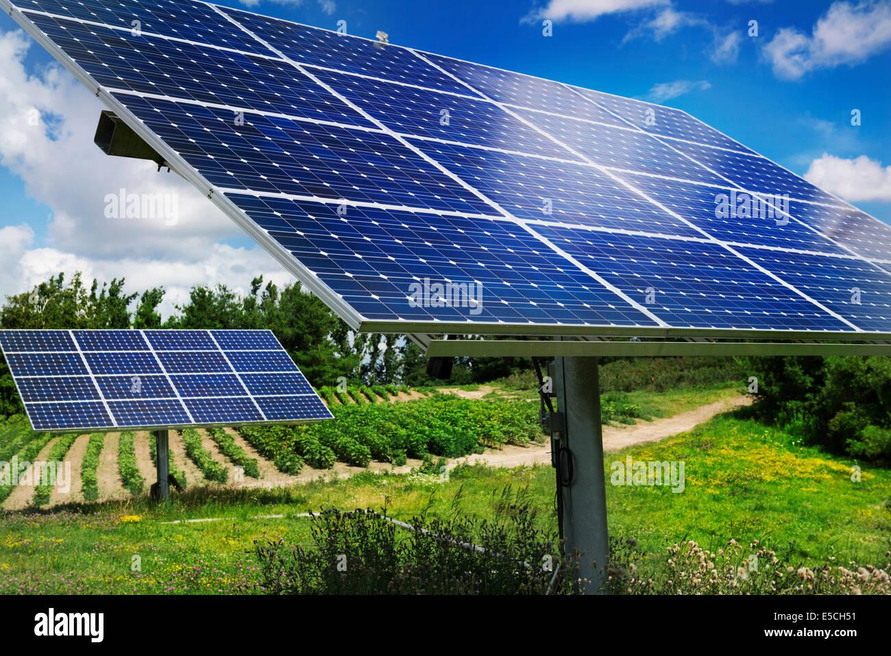 Paneles solares con luz solar trackers en una granja en Milton, Ontario, Canadá. Imagen De Stock