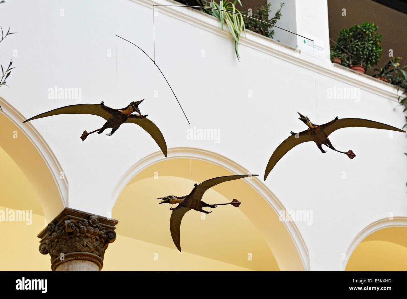 Pterosaurios, museo Paleontológico, Munich, Baviera, Alemania Imagen De Stock