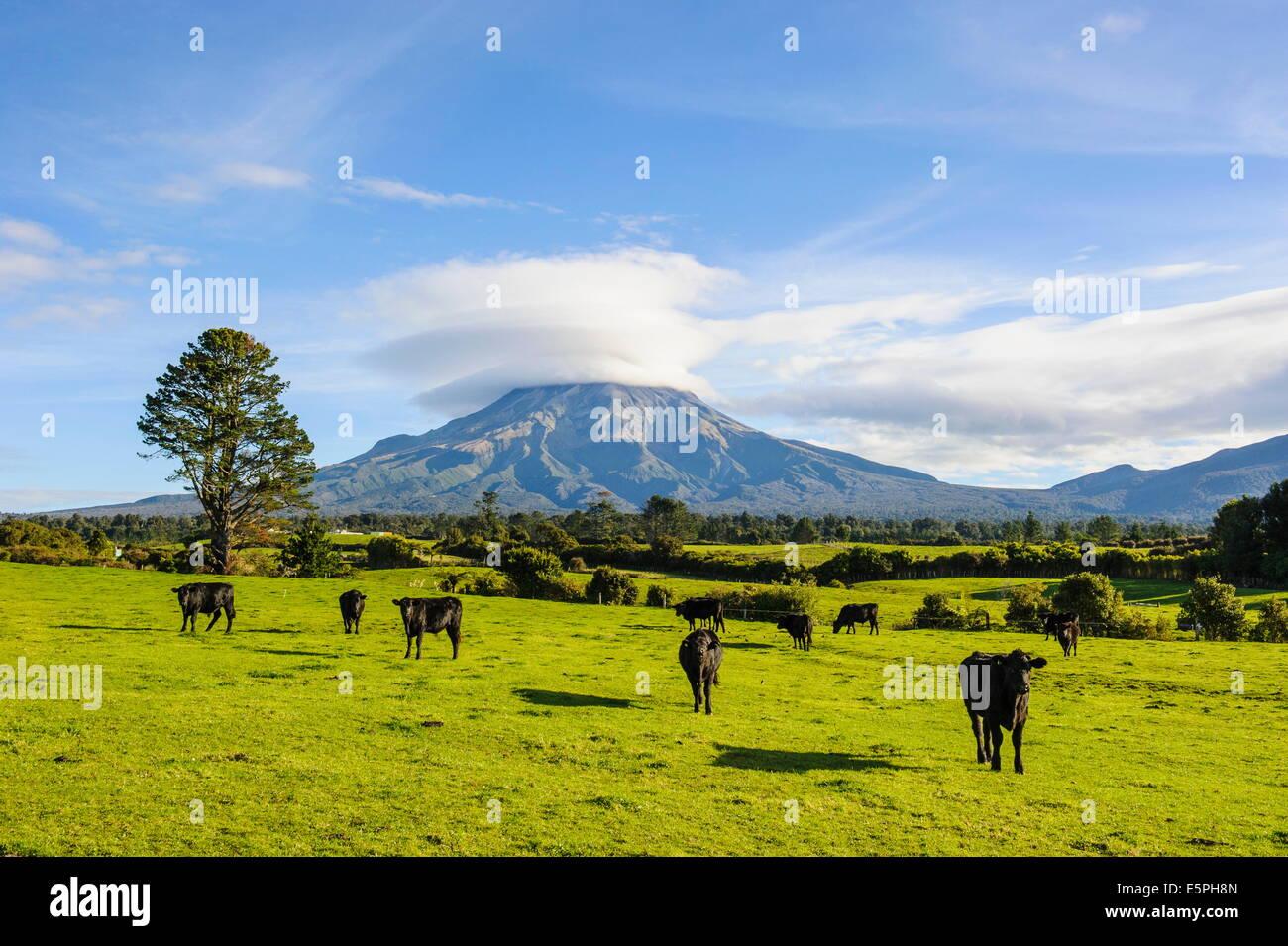 Monte Taranaki, Isla del Norte, Nueva Zelanda, el Pacífico Imagen De Stock