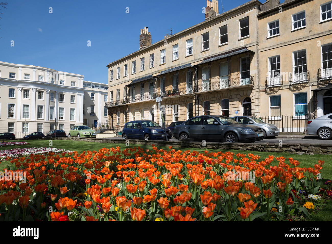 Priorato Parade, casas de estilo Regencia con muelle de tulipanes, Cheltenham, Gloucestershire, Inglaterra, Reino Imagen De Stock