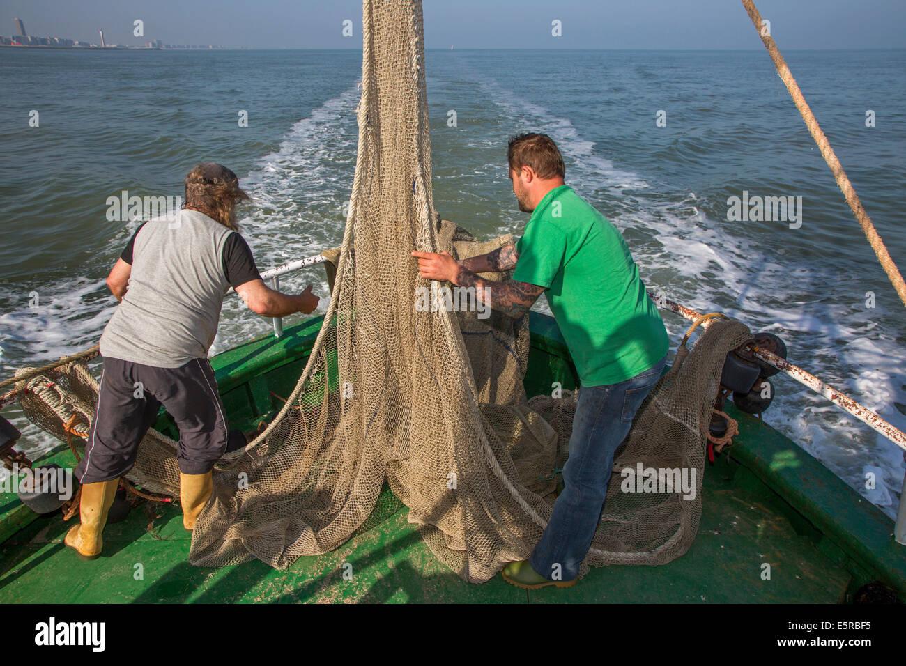 Los pescadores preparando red de pesca a bordo del barco de pesca de camarones camarones en el Mar del Norte Foto de stock