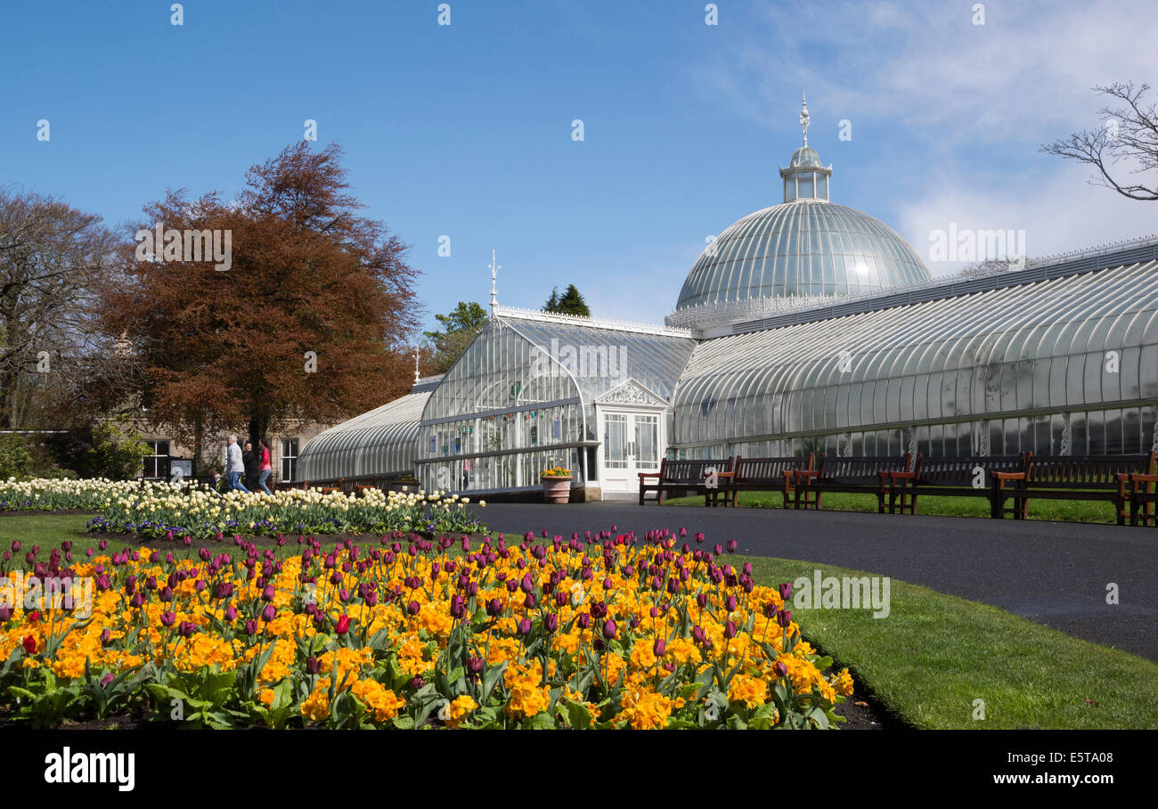 SummerGlasgow Jardines Botánicos y comida lugar enmarcado en un ...