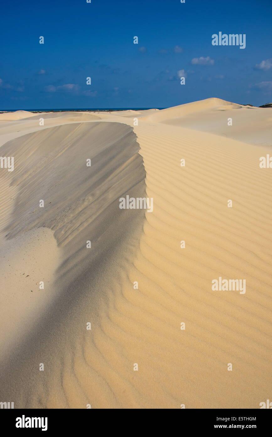 Dunas de arena en la costa sur de la isla de Socotra, Mundial de la UNESCO Sitio Heritatge, Yemen, Oriente Medio Foto de stock
