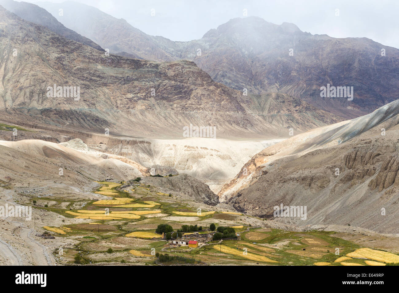 El valle de Nubra, Ladakh, India Imagen De Stock