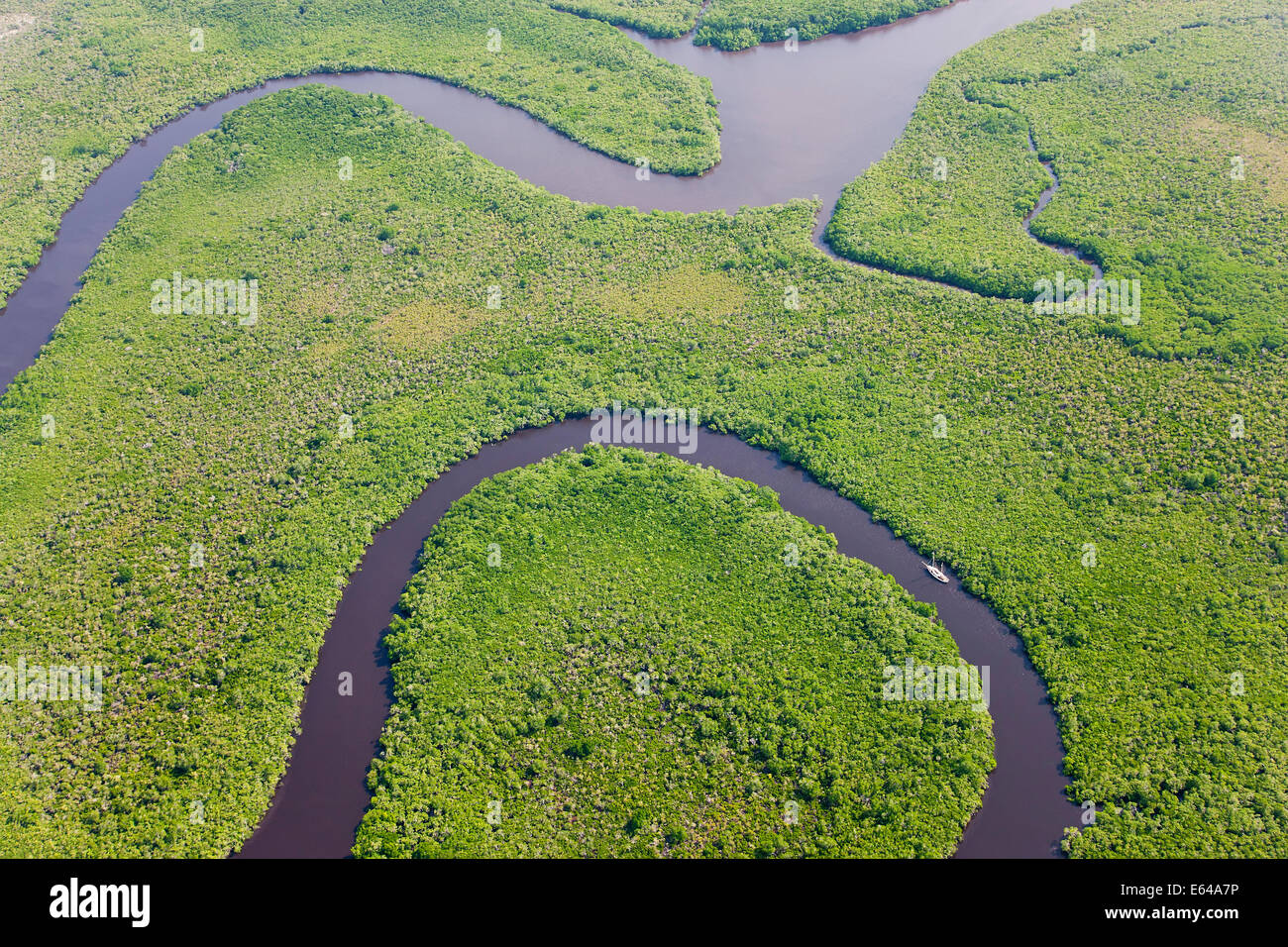 Bote de vela & vista aérea del bosque lluvioso, Daintree River, Parque Nacional Daintree, Queensland, Australia Imagen De Stock