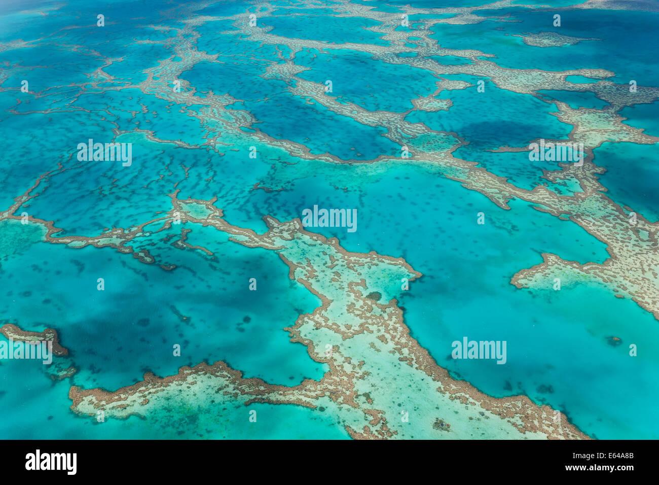 La Gran Barrera de Coral, Queensland, Australia Imagen De Stock