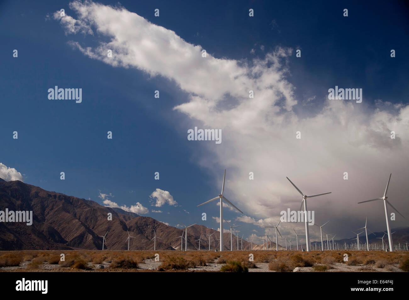 Molinos de energía eólica cerca de Palm Springs, California, Estados Unidos de América, EE.UU. Imagen De Stock