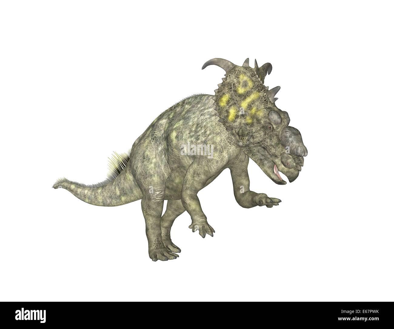 Pachyrhinosaurus Dinosaurier Pachyrhinosaurus / dinosaurio Foto de stock