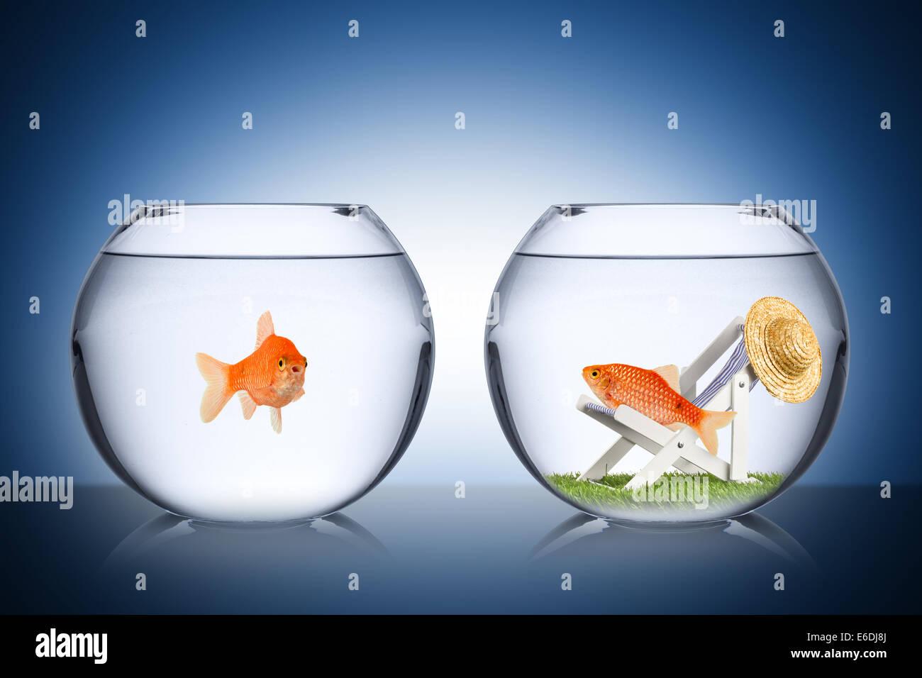 Concepto de pescado de vacaciones Foto de stock
