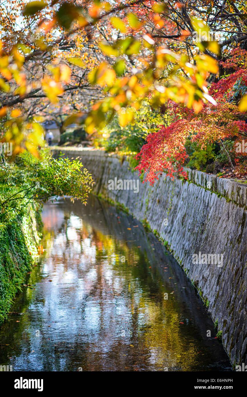 Kyoto, Japón, en el camino del filósofo en el otoño. Imagen De Stock