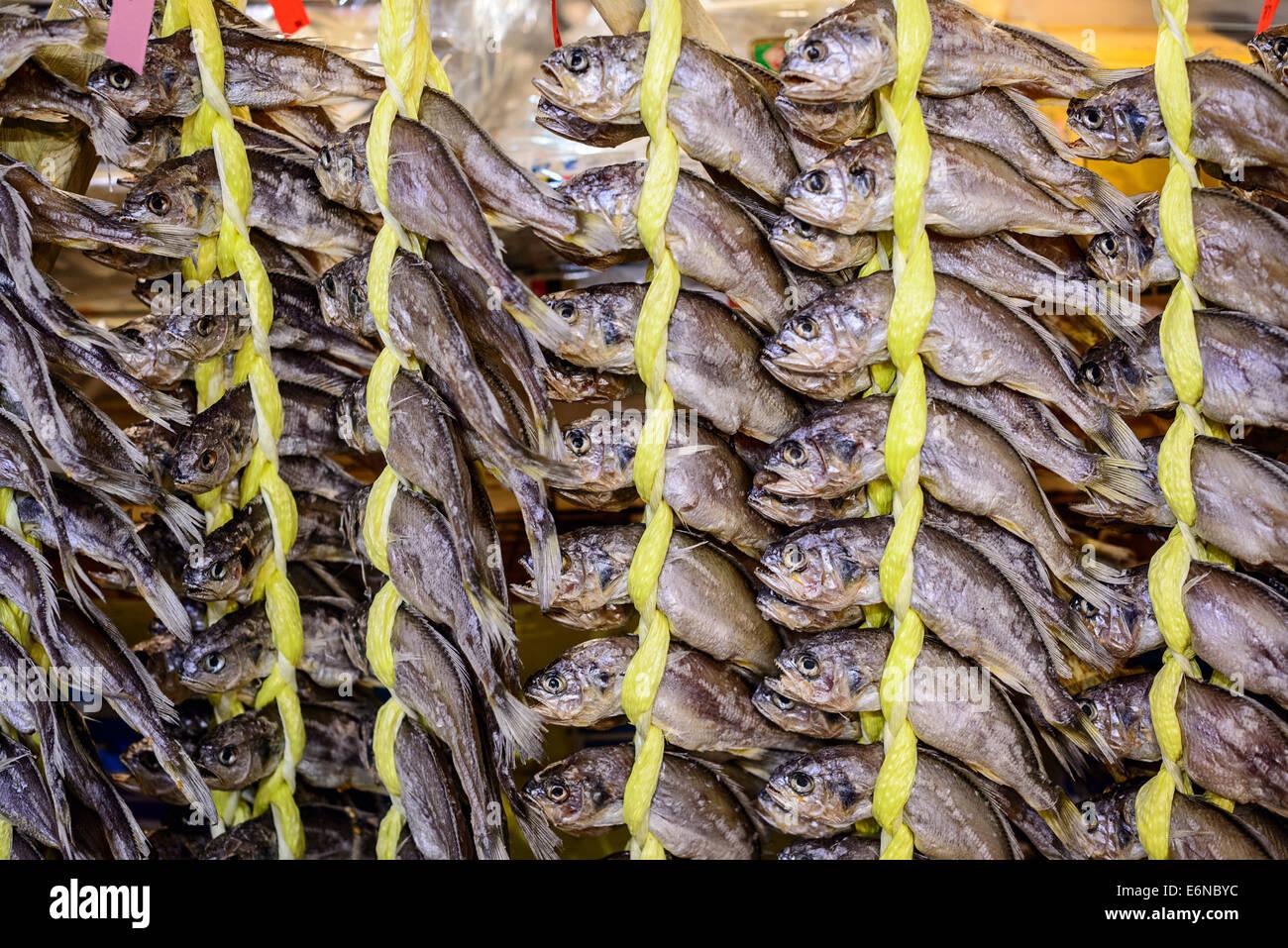 Pescado seco en el mercado de gwangjang en Seúl, Corea del Sur Imagen De Stock