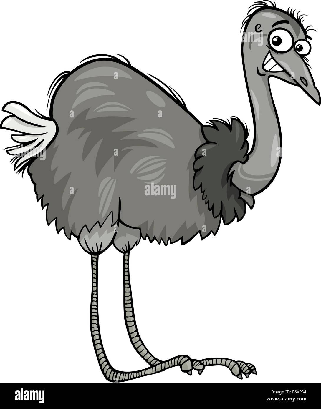 Ilustración Caricatura Divertida De ñandu Avestruz Animales