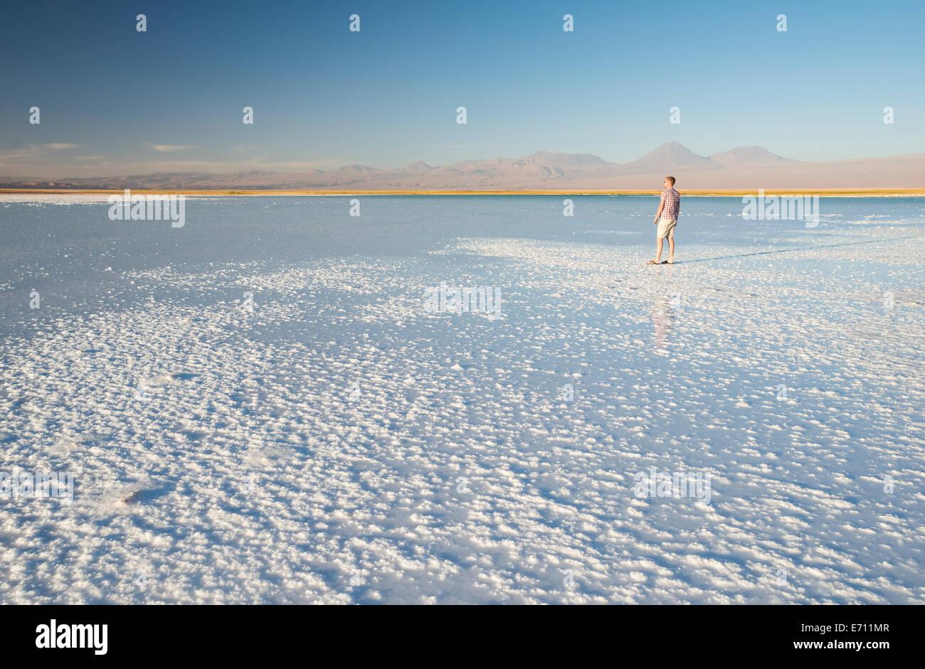 El hombre disfruta de vistas, la Laguna Salada, el Salar de Atacama, el Norte Grande de Chile Imagen De Stock