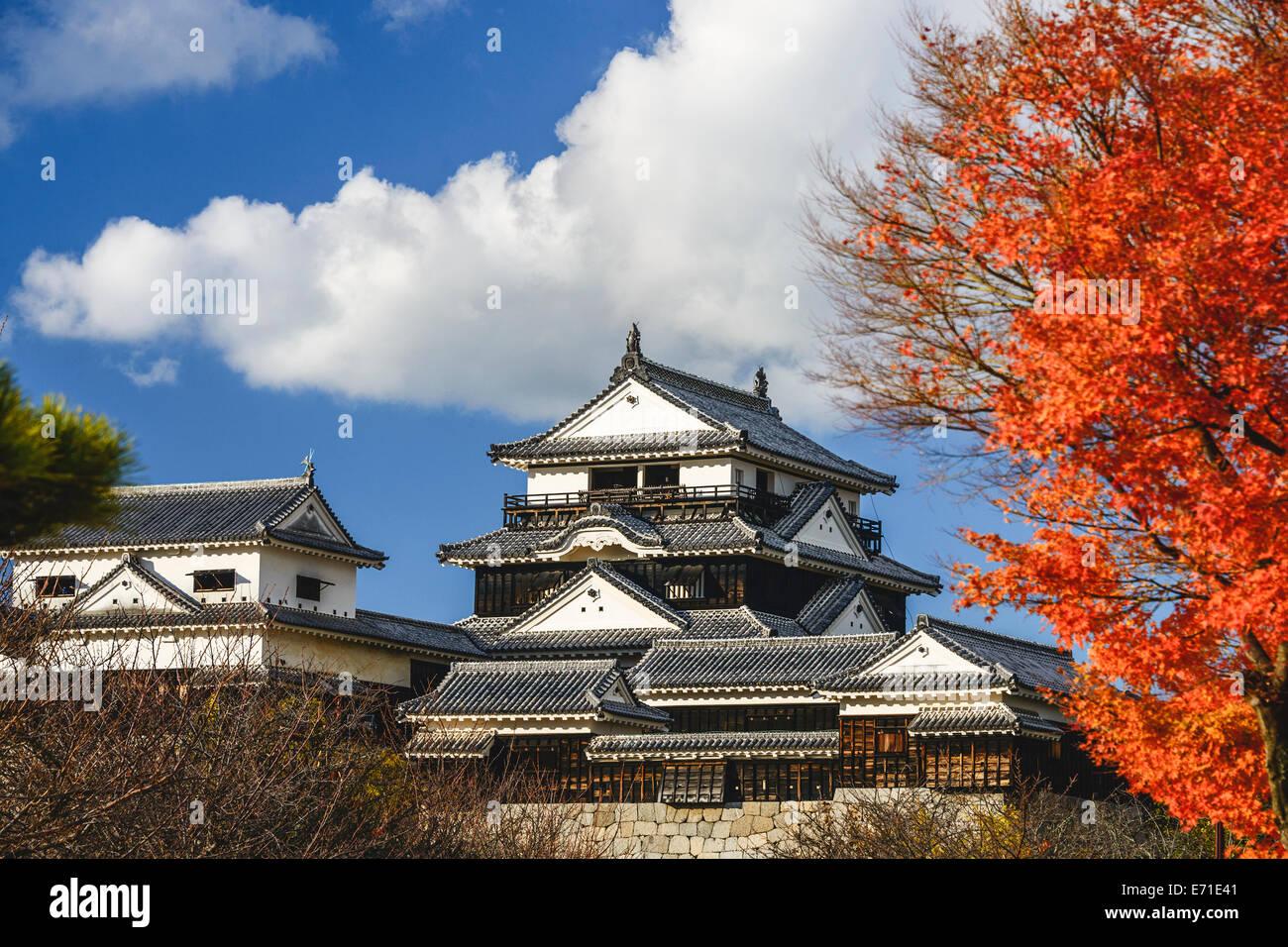 El Castillo de Matsuyama en Matsuyama, Japón. Foto de stock