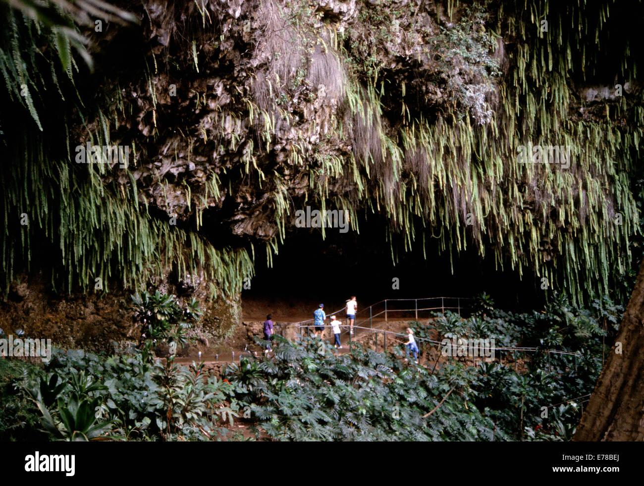 Fern Grotto (pre -2007),Kauai, Hawai Foto de stock