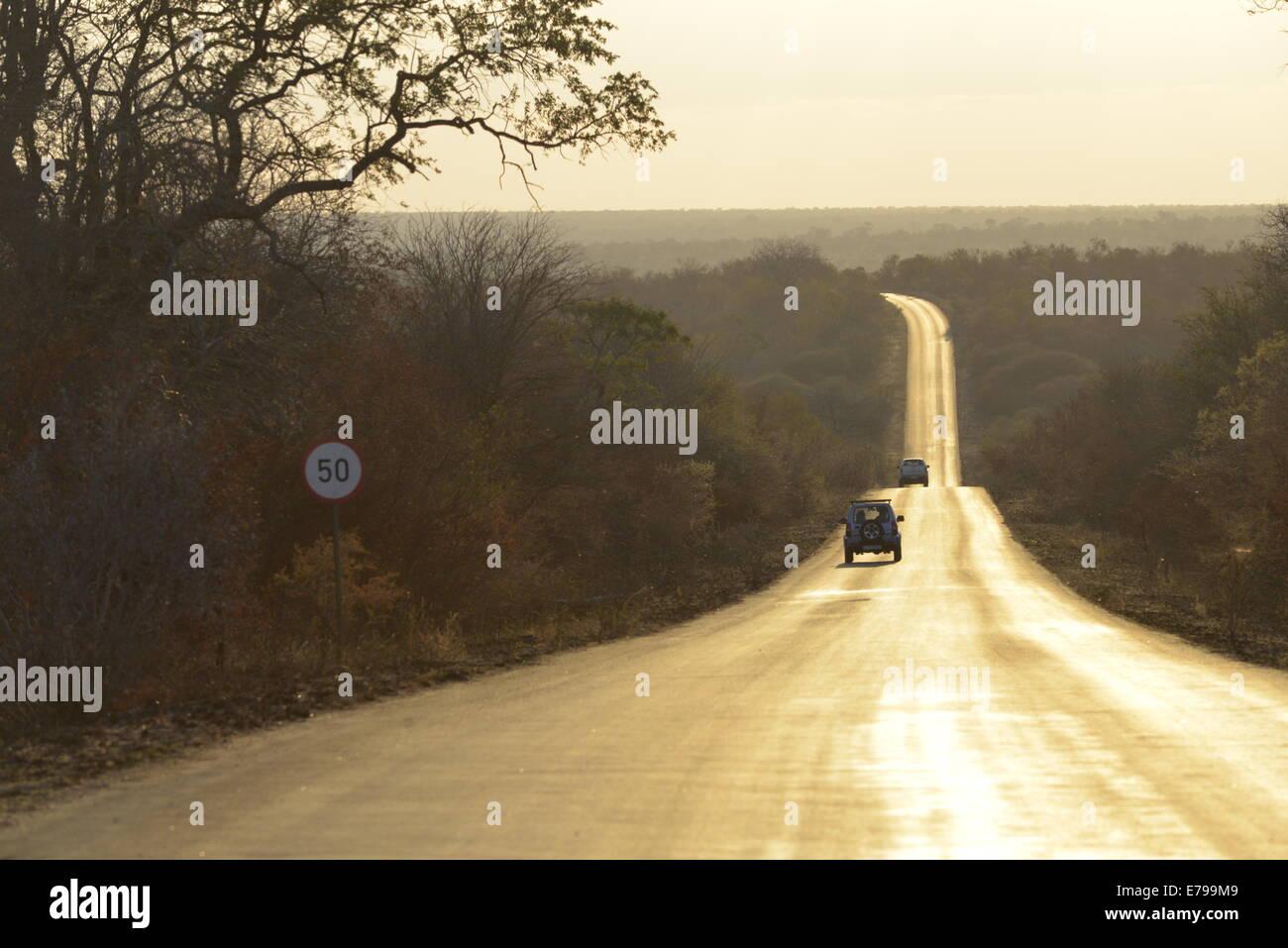 Juego de visualización a larga y serpenteante carretera al atardecer, el Parque Nacional Kruger, Sudáfrica Foto de stock