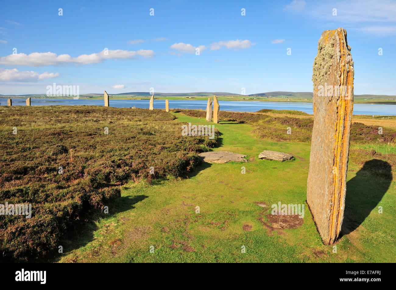 Anillo de Brodgar, neolítico y Stone Henge círculo, Continental, las Islas Orcadas, Escocia, Reino Unido Foto de stock