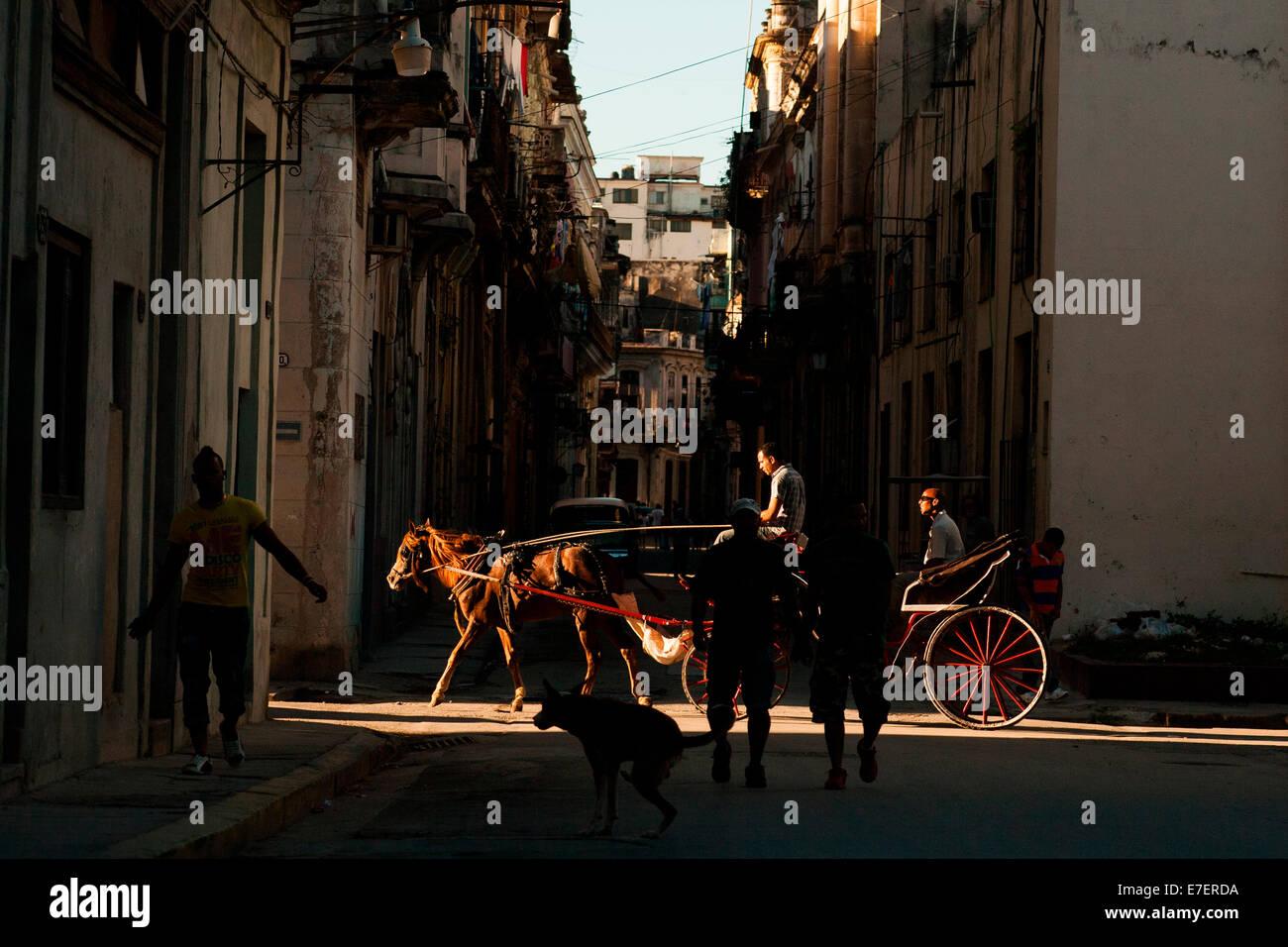 Un carruaje tirado por caballos en La Habana, Cuba lleva su pasajero en una calle lateral, a un rayo de sol de la Imagen De Stock