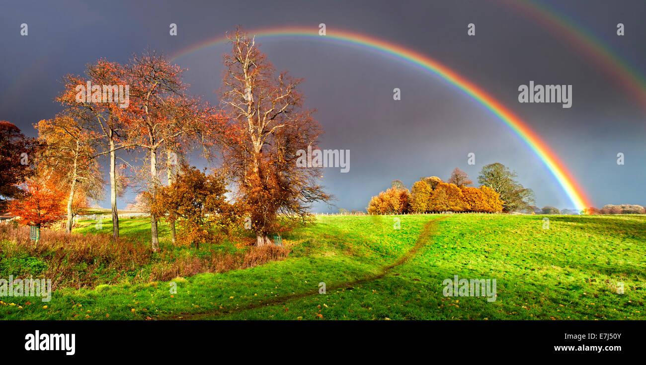 Espectacular doble arco iris sobre el Otoño Bosquecillo, cerca de Alnwick, Northumberland, Inglaterra, Reino Unido. Foto de stock