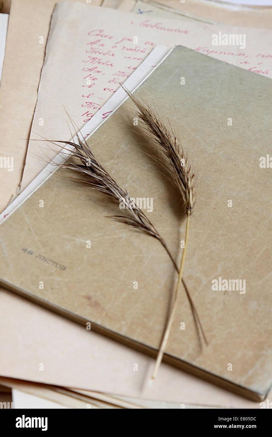 Cuaderno de mediados del xx el párpado. Foto de stock