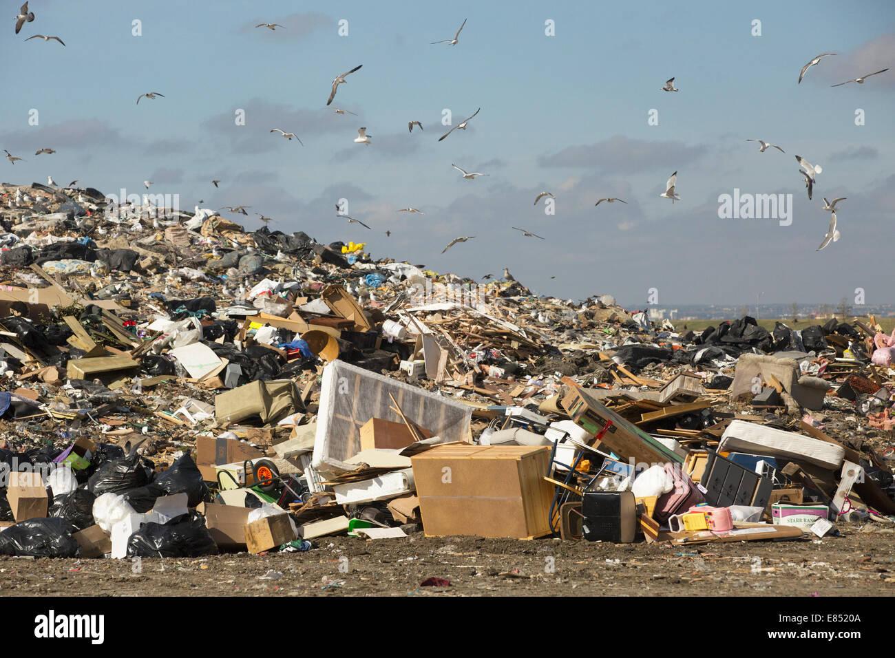Celda del relleno activo en Shepard Instalación de gestión de desechos. Imagen De Stock