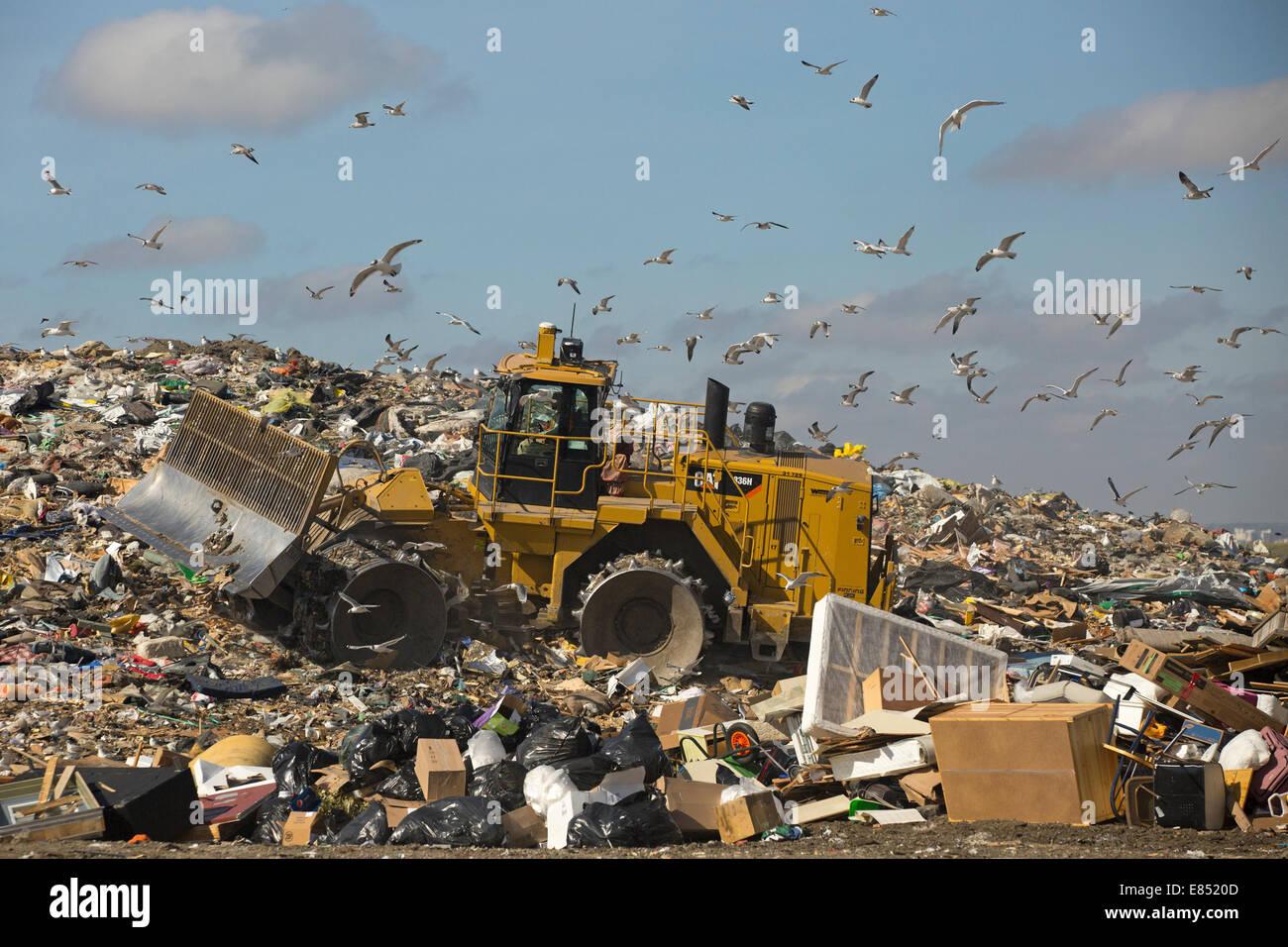 Eliminador de desechos moviendo la basura en un vertedero activa la celda en el Shepard Instalación de gestión Imagen De Stock