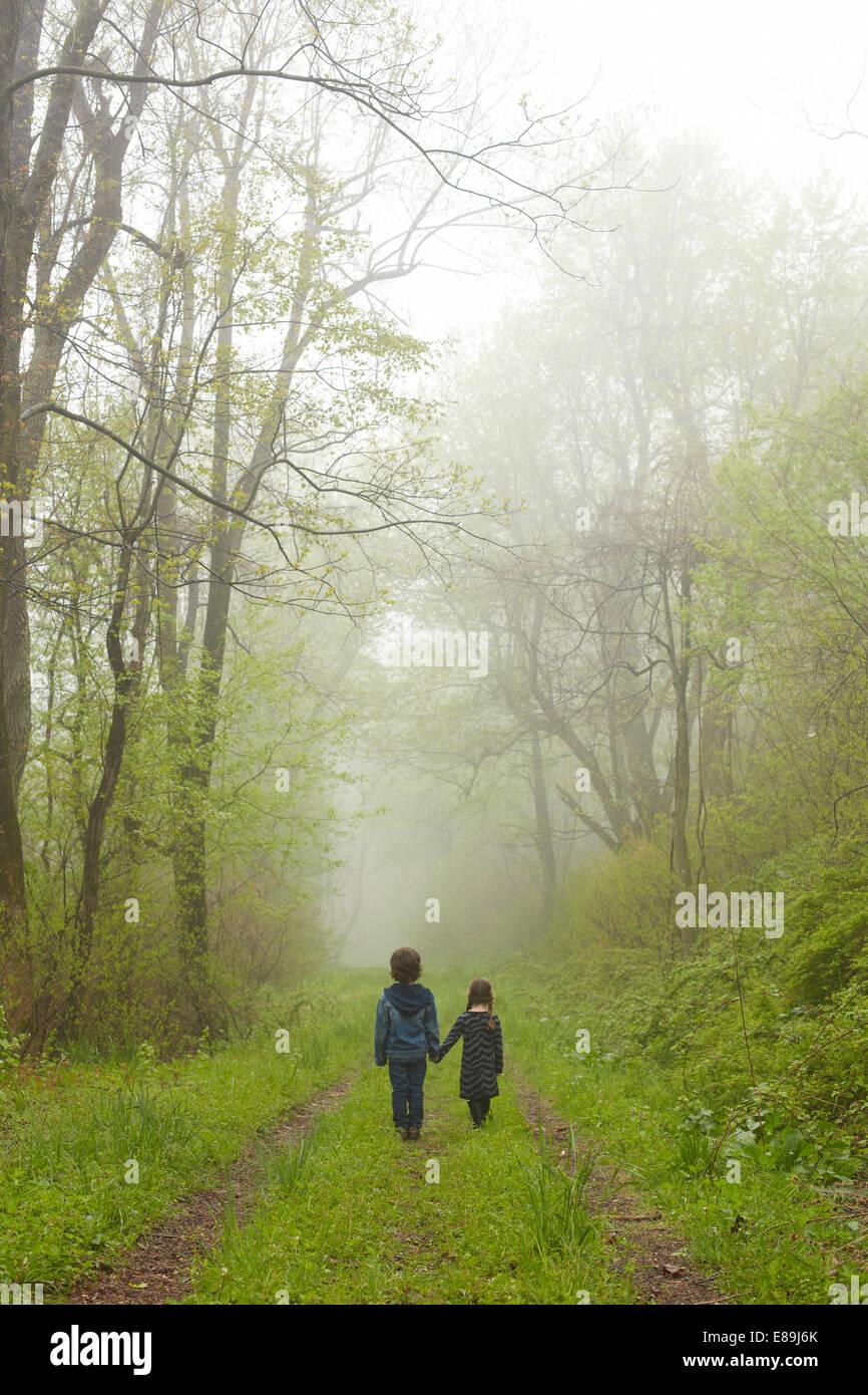 Hermano y hermana caminando por ruta de niebla Imagen De Stock