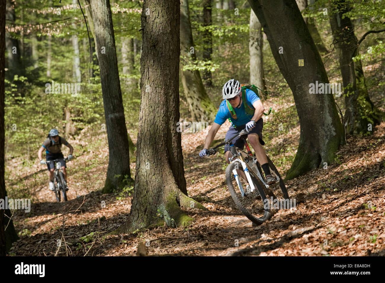 Los hombres jóvenes bicicleta de montaña en el bosque, Baviera, Alemania Imagen De Stock