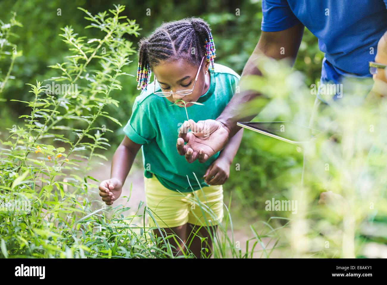 Padre con hija mirando las plantas en el bosque eco campamento Imagen De Stock
