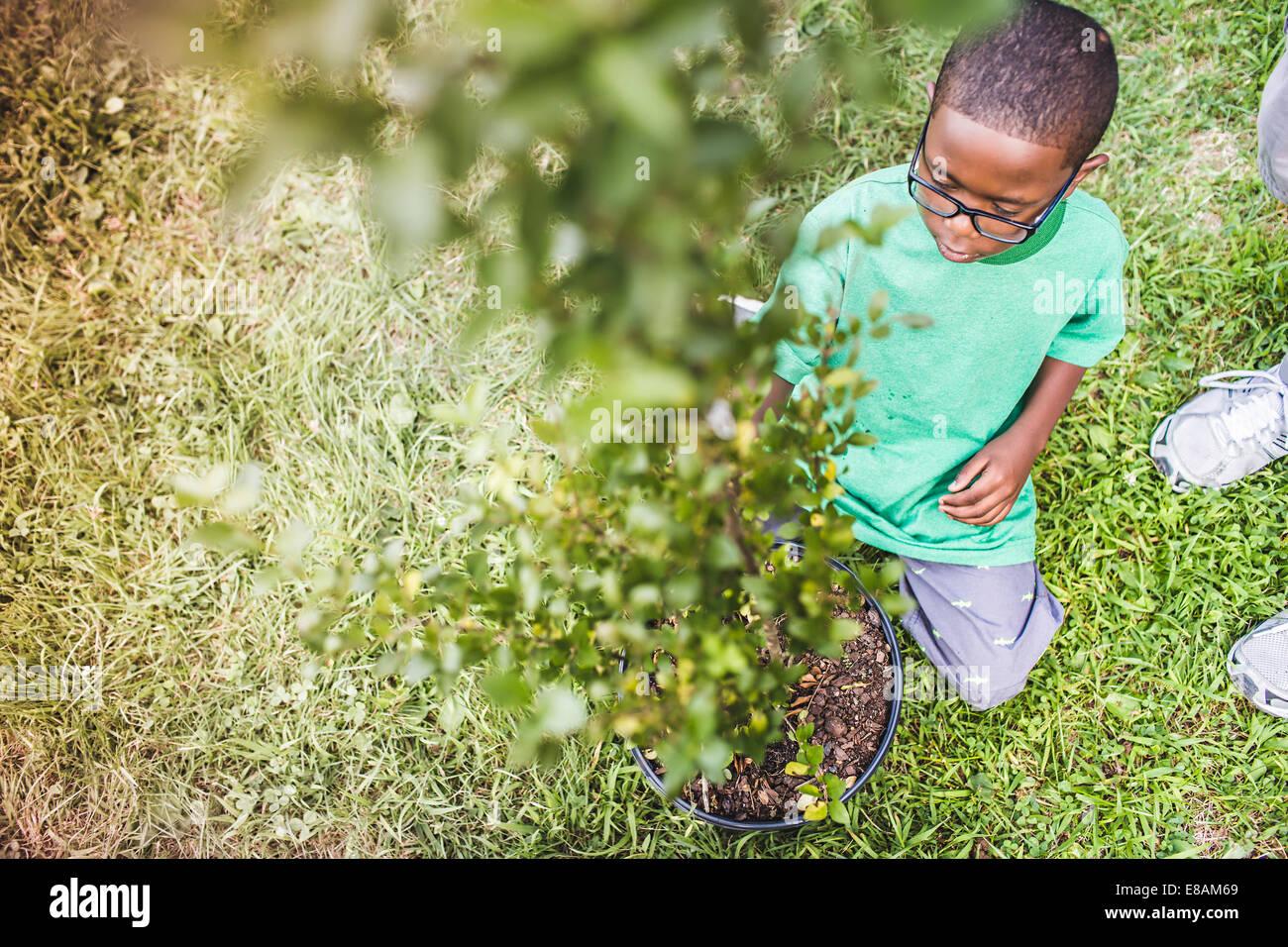 Muchacho arrodillado y tendiendo planta en parques campamento ecológico Imagen De Stock