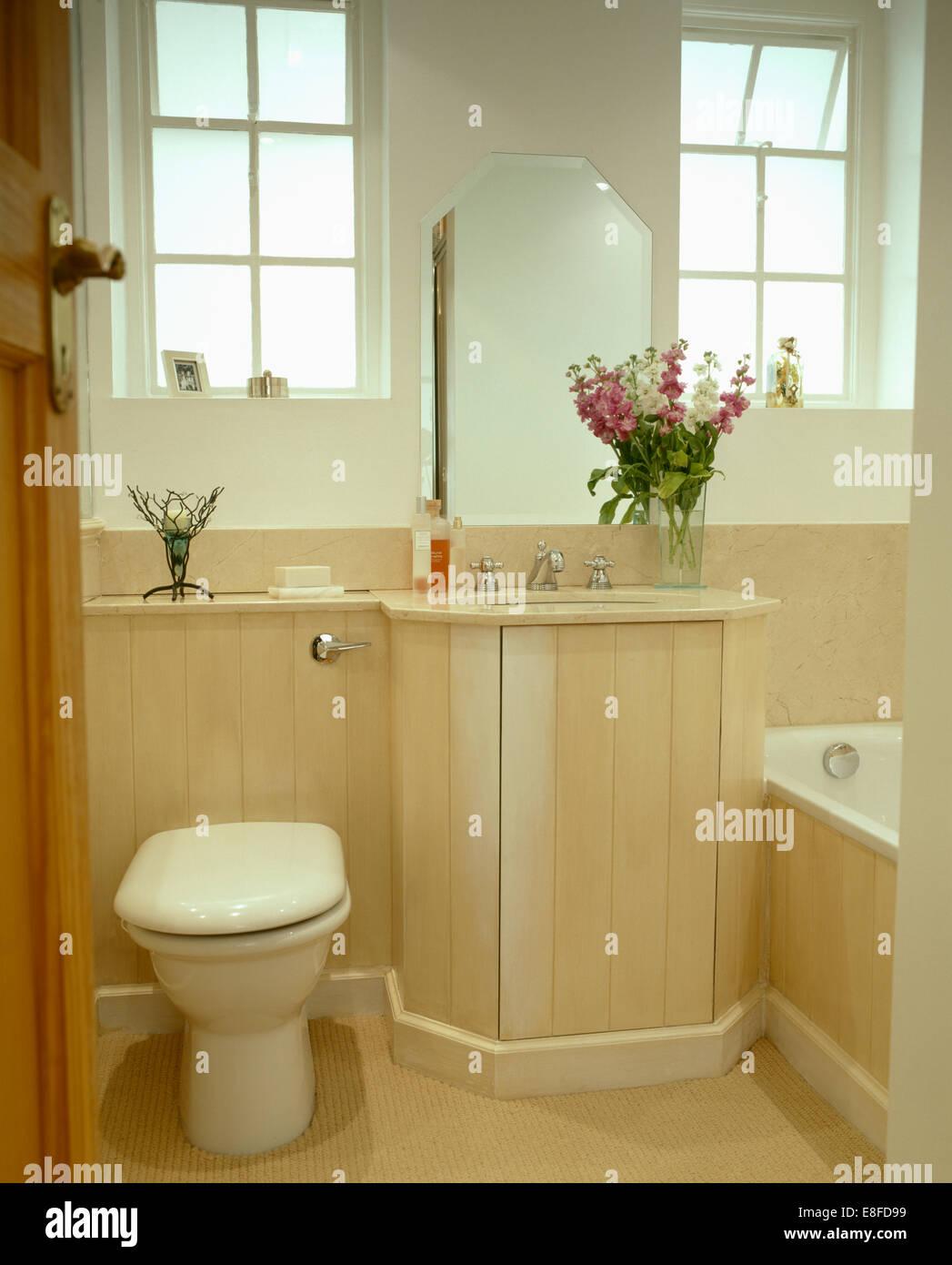 El moderno baño Wc junto a cuenca en tocador con madera pálida lengua+groove panelado Imagen De Stock