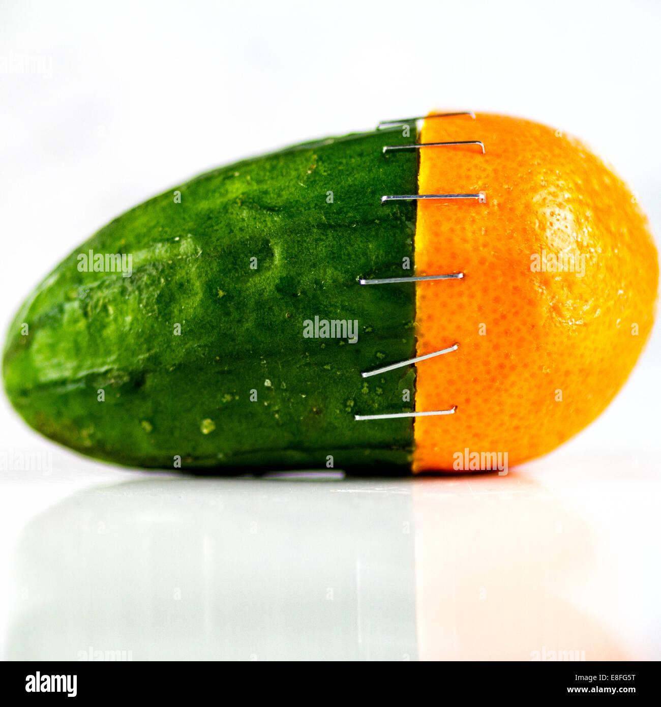 Naranja y pepino grapa Imagen De Stock