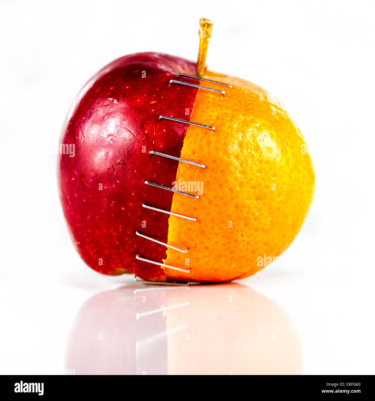 Manzana y naranja grapa Imagen De Stock