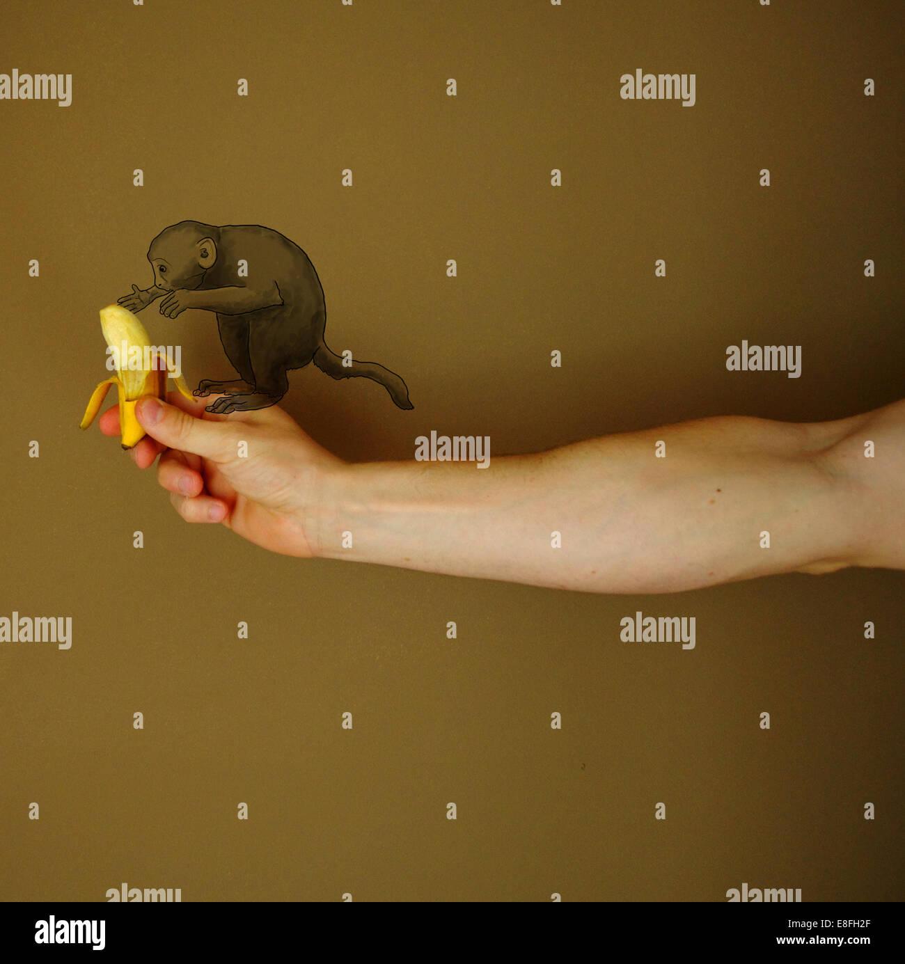 Mono conceptual Imagen De Stock