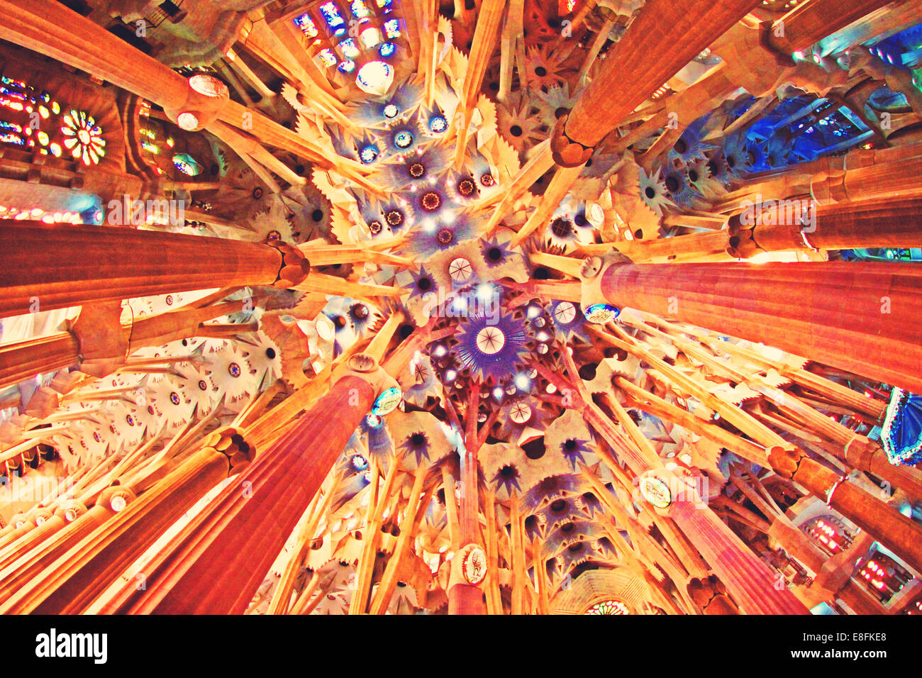 España, Barcelona, Sagrada Familia, techo Imagen De Stock