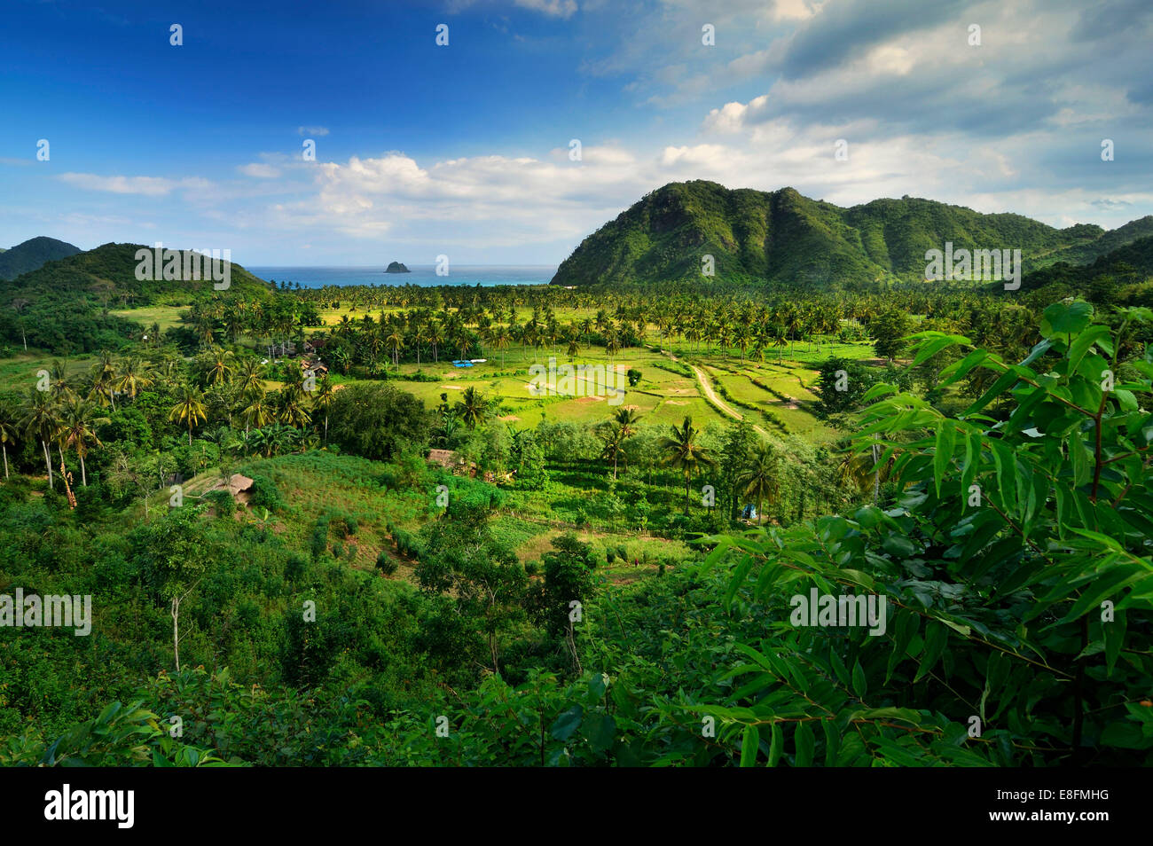 Indonesia, Nusa Tenggara Occidental, vista elevada de la granja, en el fondo del mar Imagen De Stock