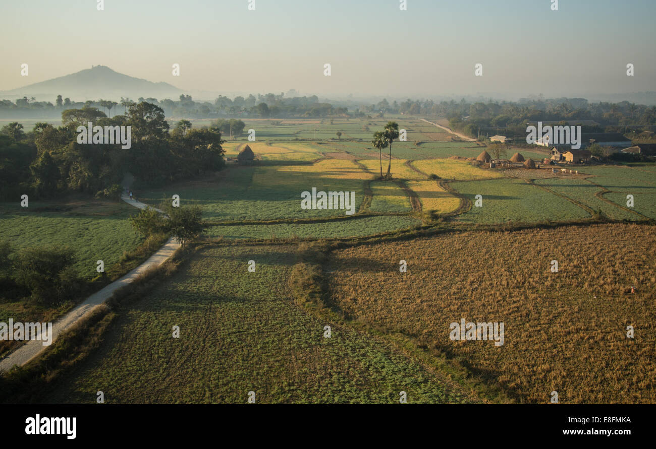 Mandalay, Myanmar coloridas plantaciones en torno a Mandalay Imagen De Stock