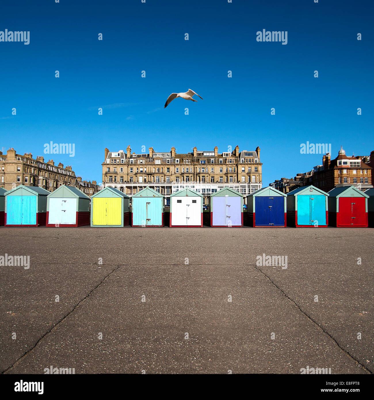 Fila multicolor de cabañas de playa, Brighton, Inglaterra, Reino Unido. Imagen De Stock